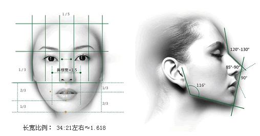 美的鼻子,侧面看鼻子占脸部横向分割1/3