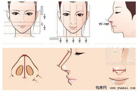 对照你的鼻型是否需要整形图片
